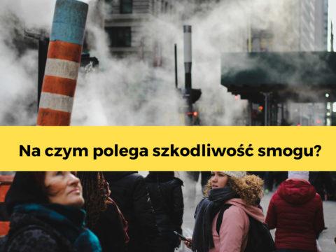 Jak smog wpływa na zdrowie?