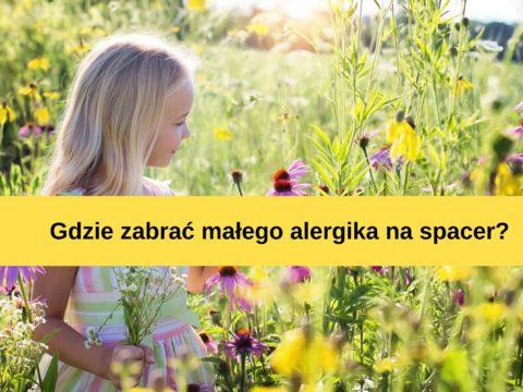 Podróż z alergikiem – garść porad