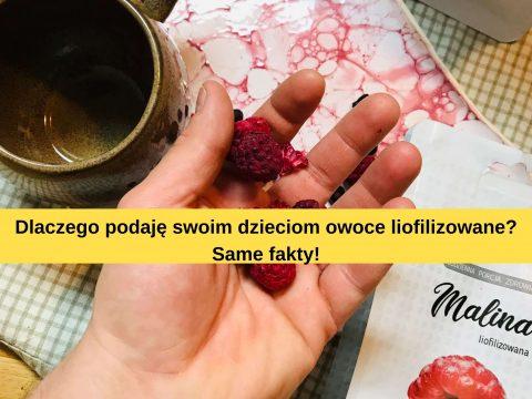 Liofilizowane owoce – czy warto?