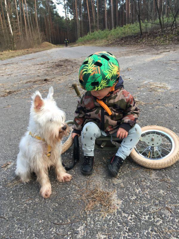 Kask rowerowy dla dziecka może mieć kształt klasyczny albo orzecha.